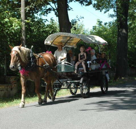 Vyjížďky v kočáře taženém koňmi