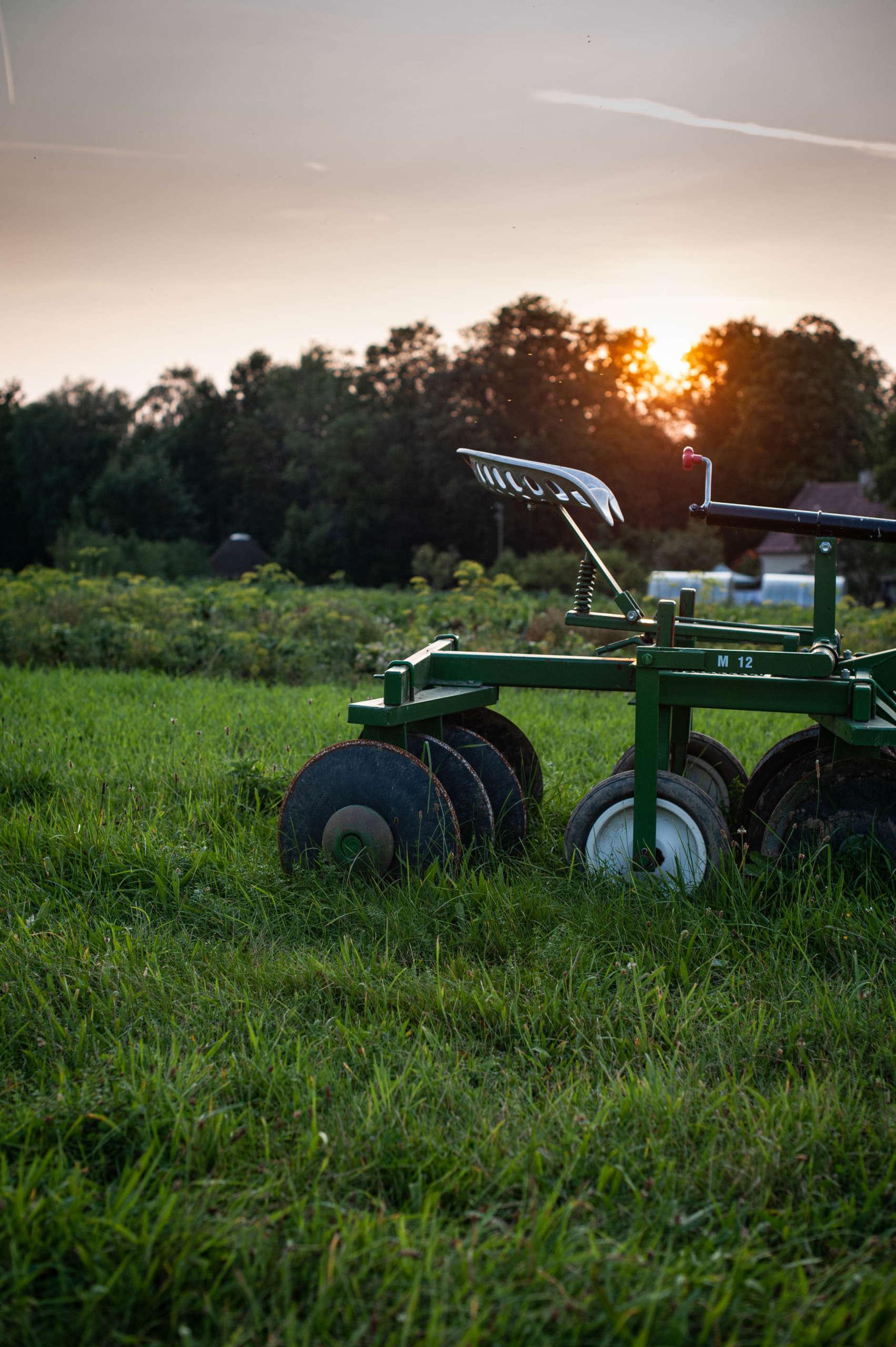 Stáže na farmě